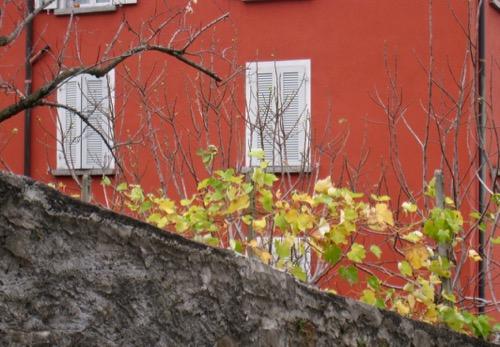Herbst  im Tessin